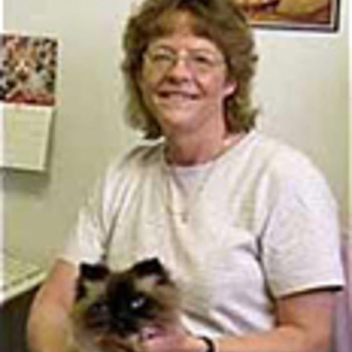 Jacky Brown <br />Bookkeeper photo